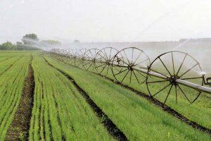 Ratari: Poljoprivredi neophodna jača finansijska injekcija