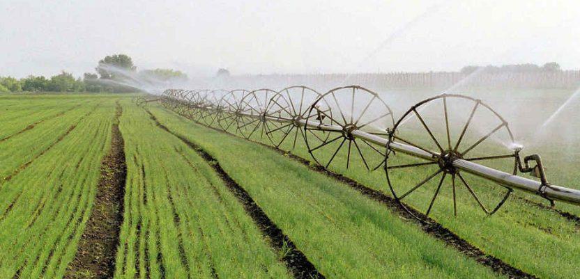 Efikasniji agrarni budžet Vojvodine