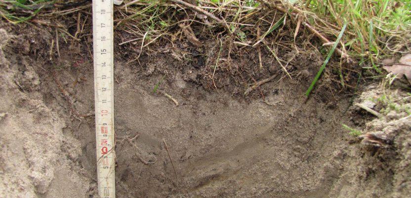 Počela analiza zemljišta pomoću aplikacije