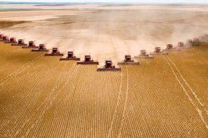 Negativan uticaj intenzivne poljoprivrede na prirodu