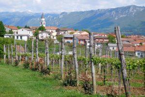 Slovenija: Izbalansirati odnose u agro lancu