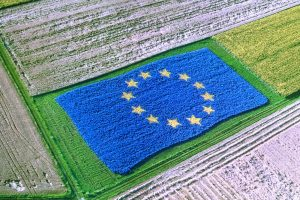 ZAP posle 2020: Izazovi nove agrarne politike EU