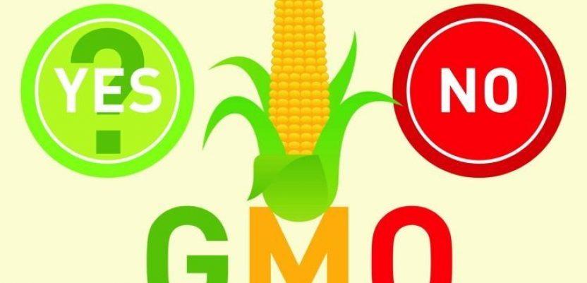 Ljajić: Nema razloga za strah od GMO