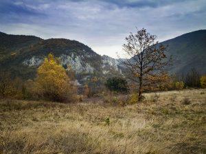 kucanj_beljanica