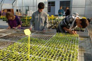 Začetak dualnog obrazovanja u poljoprivrednim školama