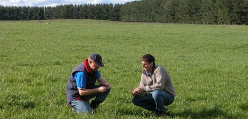 U Srbiji nezaposleno 3.500 poljoprivrednih stručnjaka