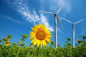 Koristimo trećinu obnovljivih izvora energije