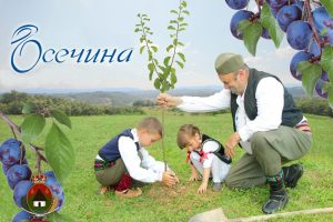 Sajam šljiva u Osečini od 24. do 27. avgusta