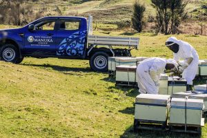 Srpski pčelari na Novom Zelandu
