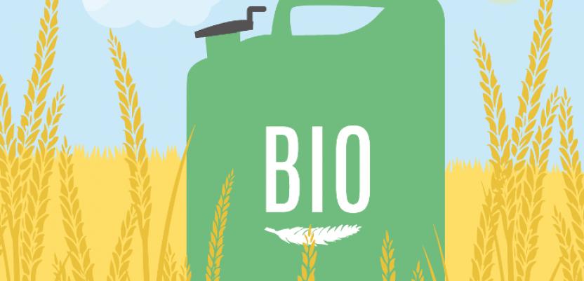 Centralna Evropa protiv izbacivanja biogoriva prve generacije