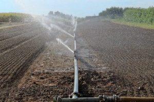 Uobičajeno zalivanje useva zagađenom vodom