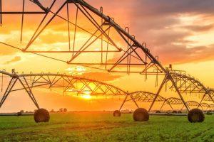 Srbija može da sanja poljski budžet za agrar