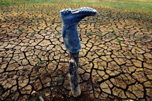 Suše u Srbiji sve učestalije