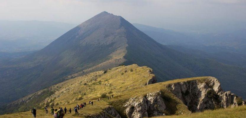 WWF: Ugrožena biološka raznovrsnost planina