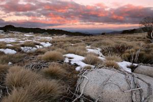 Najtoplija zima u Australiji, do sada