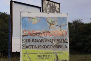 Tone životinjskih leševa razbacane po Srbiji