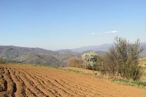 Vranje: Tender za izradu studije o karakteristikama zemljišta