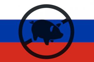 Rusija neće izaći iz STO zbog spora oko svinjetine