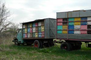 Srbija dobija pravilnik o registraciji pčelarskih vozila