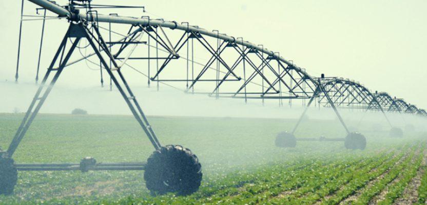 Do leta pod sistemima za navodnjavanje 37.000 hektara