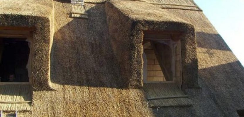 Krovovi od trske – atraktivna tradicija