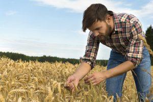 Produžen rok za podsticaje za mlade poljoprivrednike