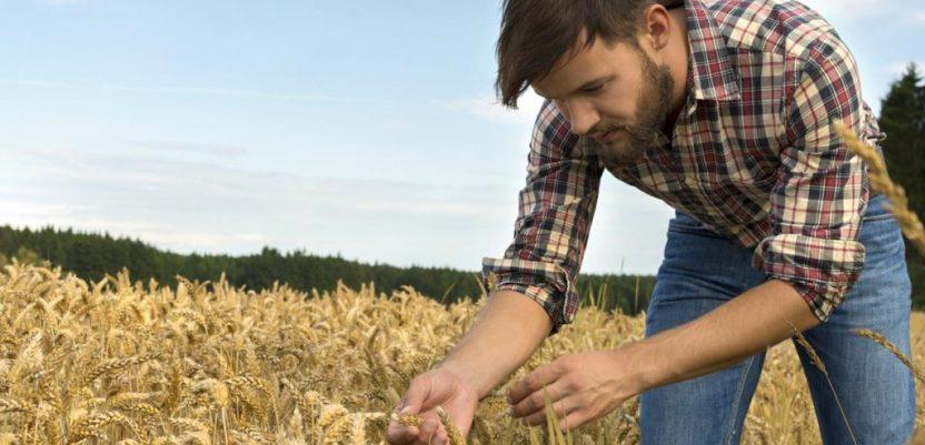 EU: Za mlade poljoprivrednike milijardu evra