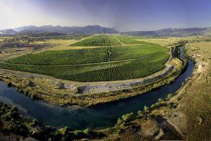 Crna Gora na svetskoj vinskoj mapi