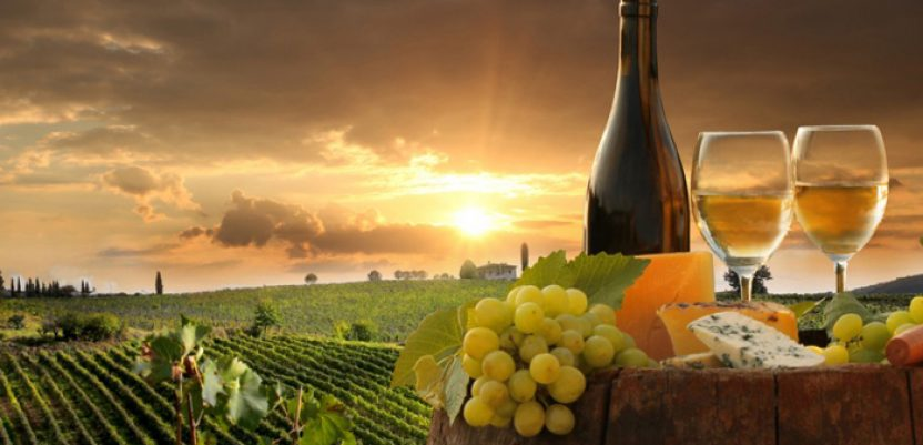 Vina iz Srema od sada sa zaštićenim geografskim poreklom
