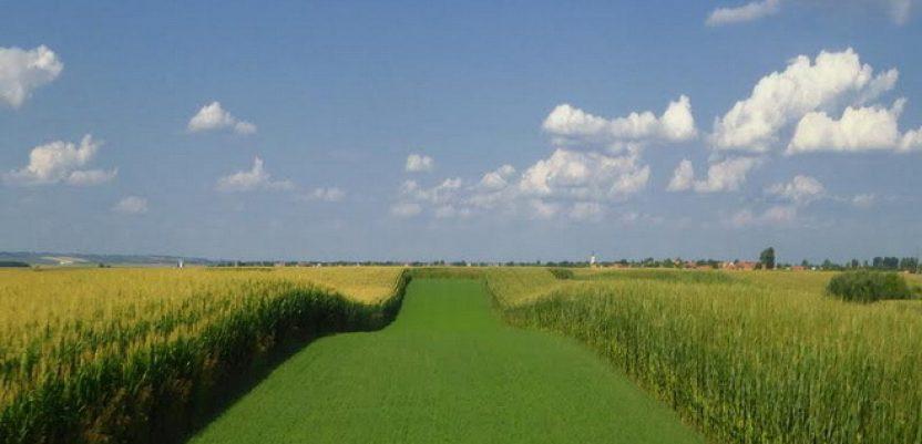 Krediti za kupovinu zemljišta i nabavku mehanizacije