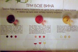 """Izložba """"Tri boje vina"""" otvorena u muzeju u Trsteniku"""