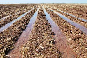 Degradacija zemljišta preti blagostanju čovečanstva