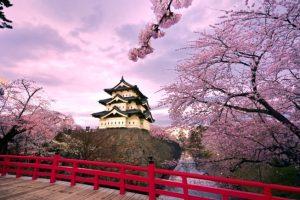 Procvetale trešnje označile početak proleća u Japanu