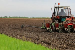 Suša otežava setvu pšenice