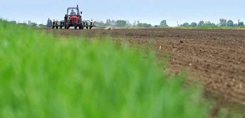 U Banatu se traktori povukli sa njiva