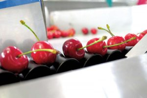 Za preradu voća, povrća, mesa i mleka stižu sredstva iz IPARD-a