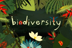 Stop the loss of biodiversity