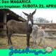 """""""Dan magarica"""" u subotu u Zasavici"""