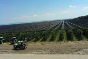 Delta agrar u 2018. izlazi na berze u Varšavi i Beču