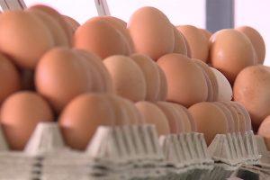 Pojačane kontrole jaja, ribe i mesa pred uskršnji praznik
