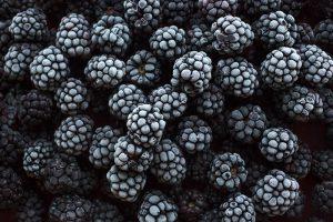 Interesovanje za otkup organskog smrznutog voća iz Srbije