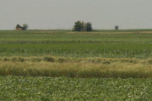 Matijević: Bolje je baviti se poljoprivredom u Hrvatskoj