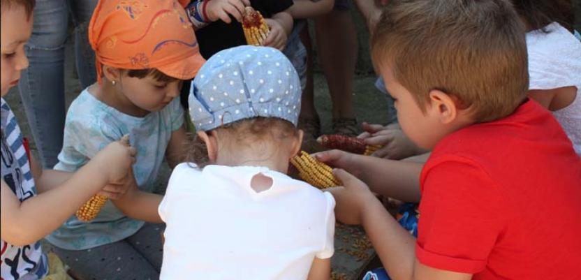 Gradska deca na seoskom imanju