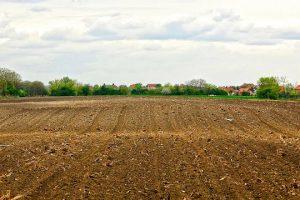 Prodaja imovine poljoprivrednih kombinata u stečaju