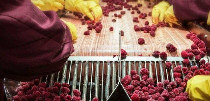 U Arilju počinje izgradnja fabrike za preradu voća