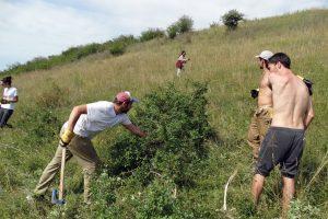 Mladi čuvaju prirodu Srbije