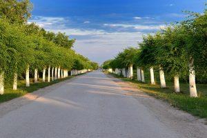 U Vojvodini sve više latifundija