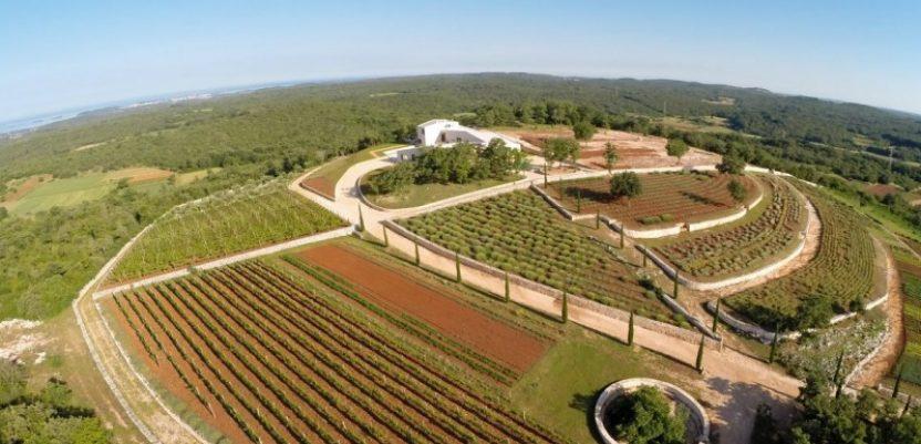 Hrvatska: Na prodaju park mediteranskog bilja