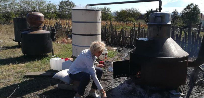 U Šumadiji i žene prave rakiju