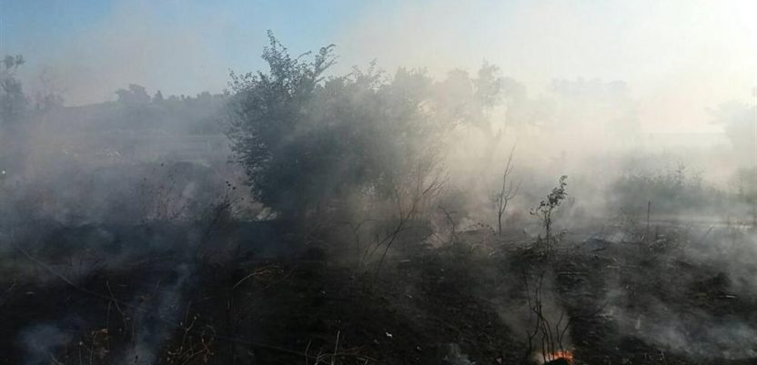 Ministarstvo traži kazne za požare u Carskoj bari